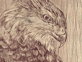 Mono-print Falcon no:1