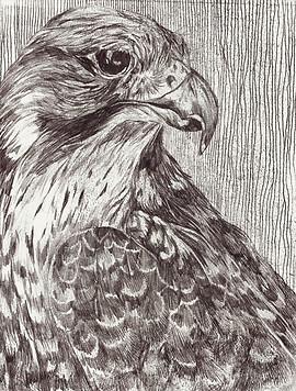 Mono-print Falcon no:2