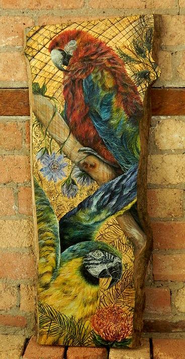 parrotplank.jpg