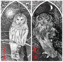 Winter & Summer Owl