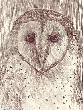 Mono-print Barn Owl no:2