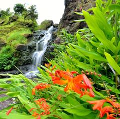 Nature Waterfalls