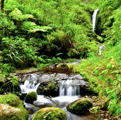 Many waterfalls when hiking