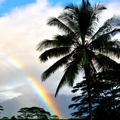 Rainbow on paradise
