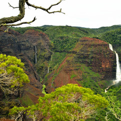 Waimea Canyon & Waterfalls