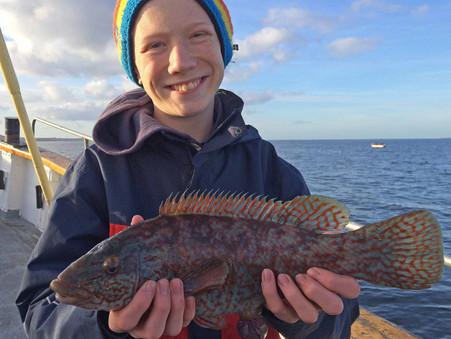 Lyckat höstlovsfiske i Öresund