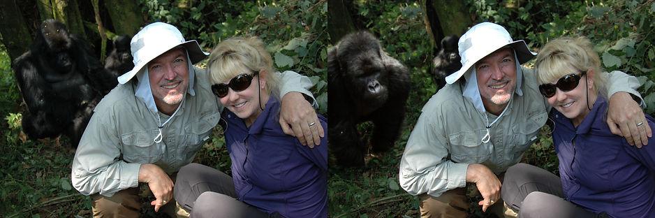 GorillasBeforeAfter.jpg