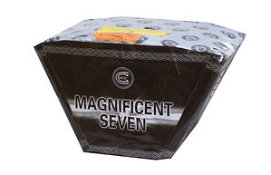 Magnificient seven.jpg