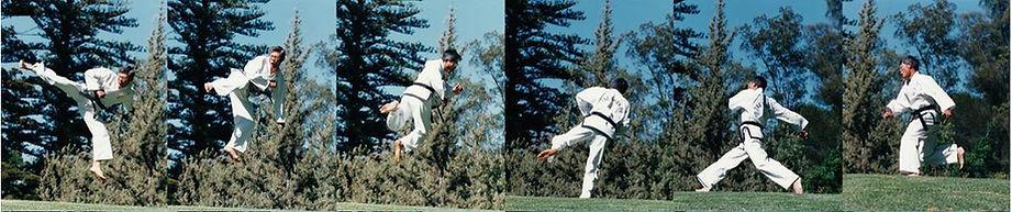 Master Vernon Low - running jump back kick