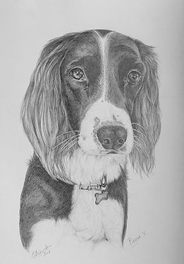pet portrait dog cat horse drawing commi