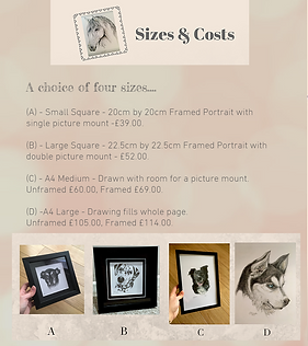 Copy of Copy of Costs & Sizes pet portra