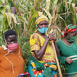 5.Agricultrices rwandaises.JPG