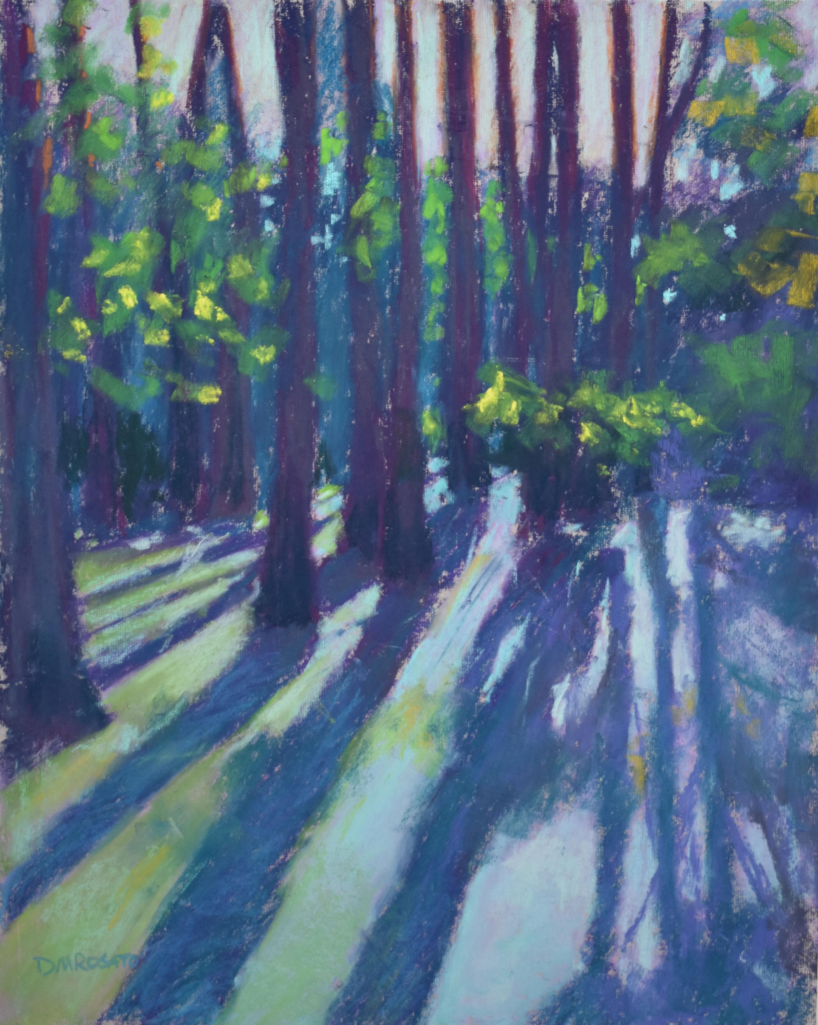 Cyprus Swamp Mag Plantation 11x14