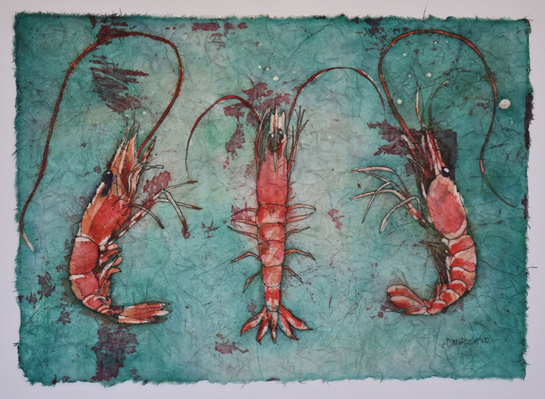 Shrimp 16x12