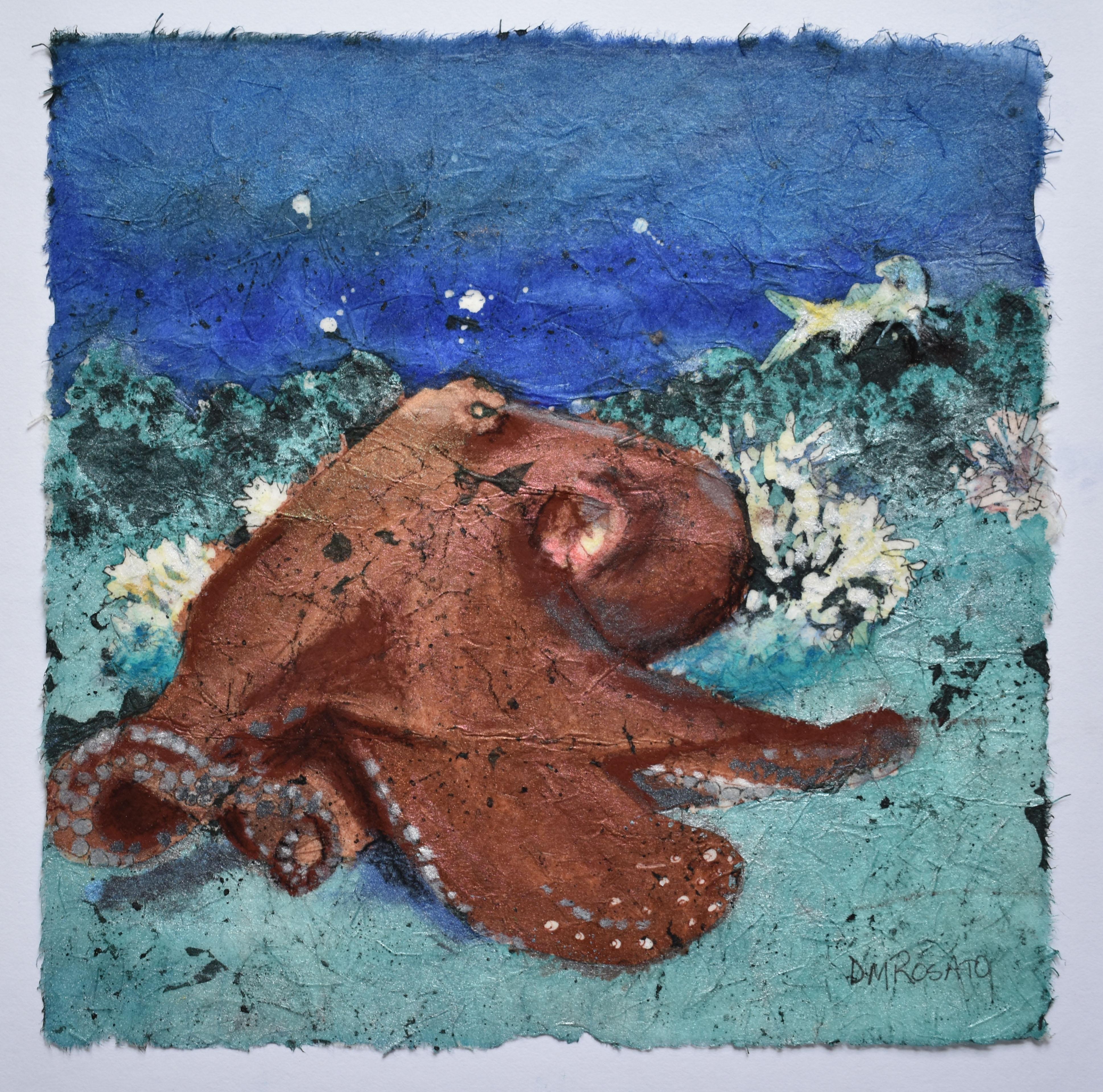 Resting Octopus 10x10