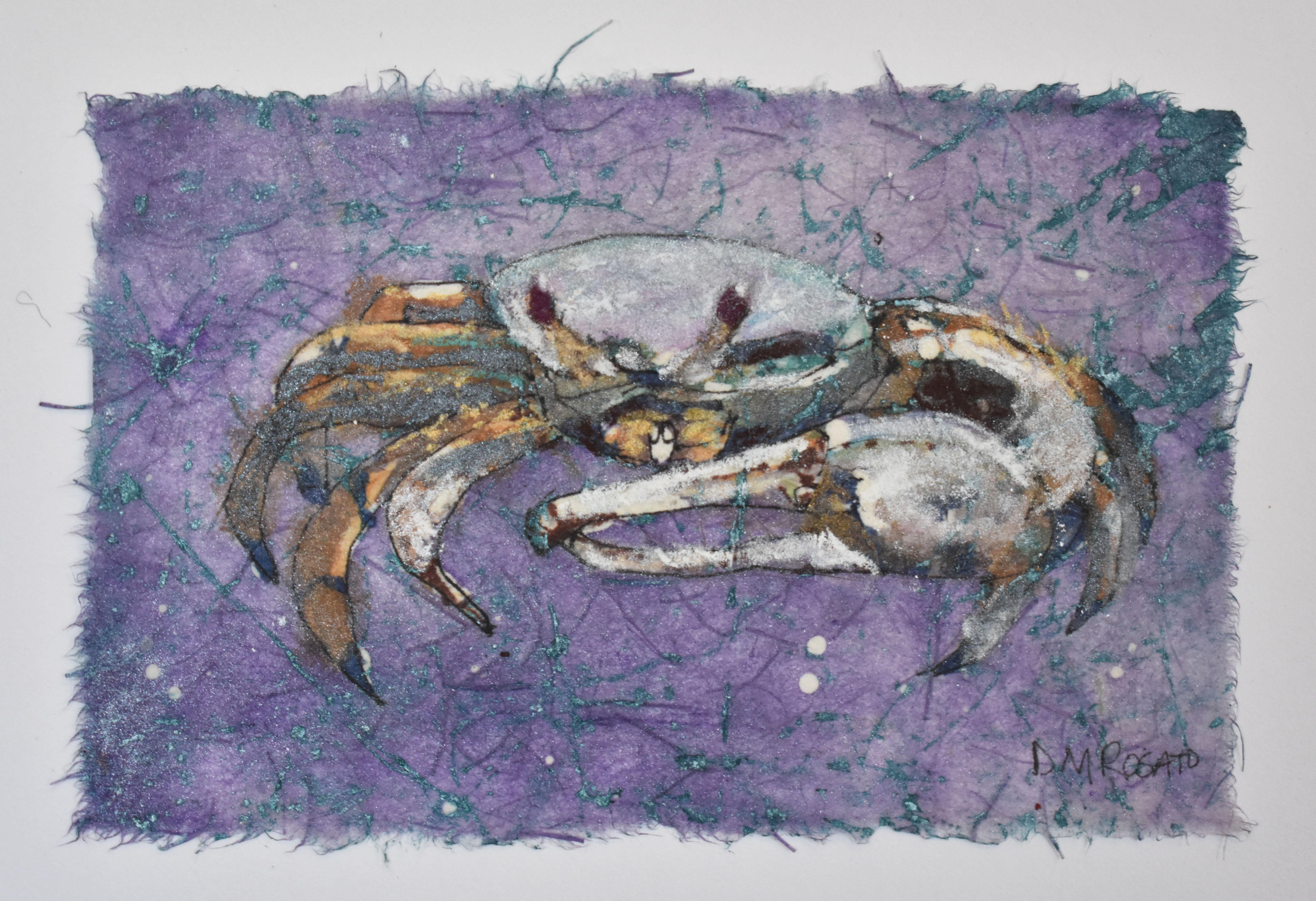 Fiddler Crab 7x5