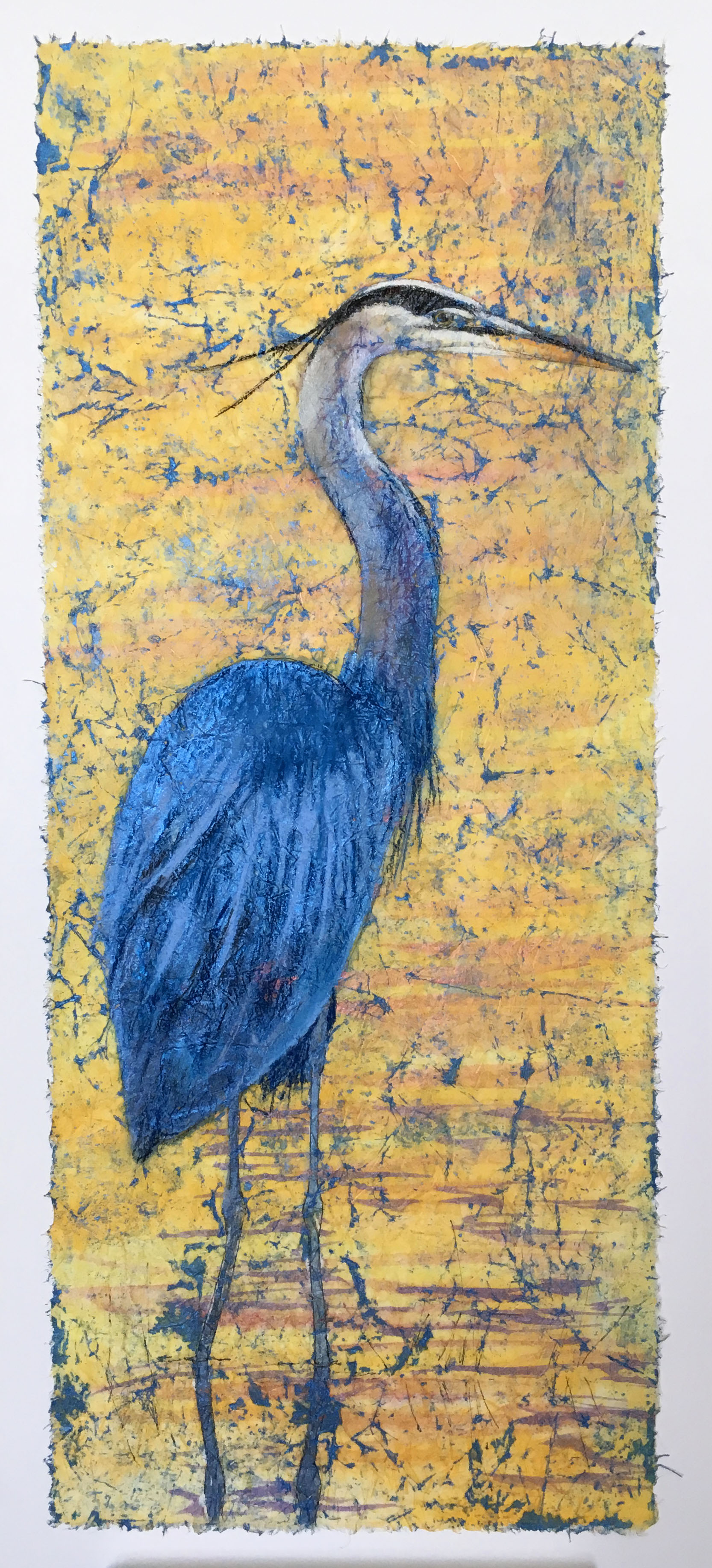 Great Blue Heron 12x26