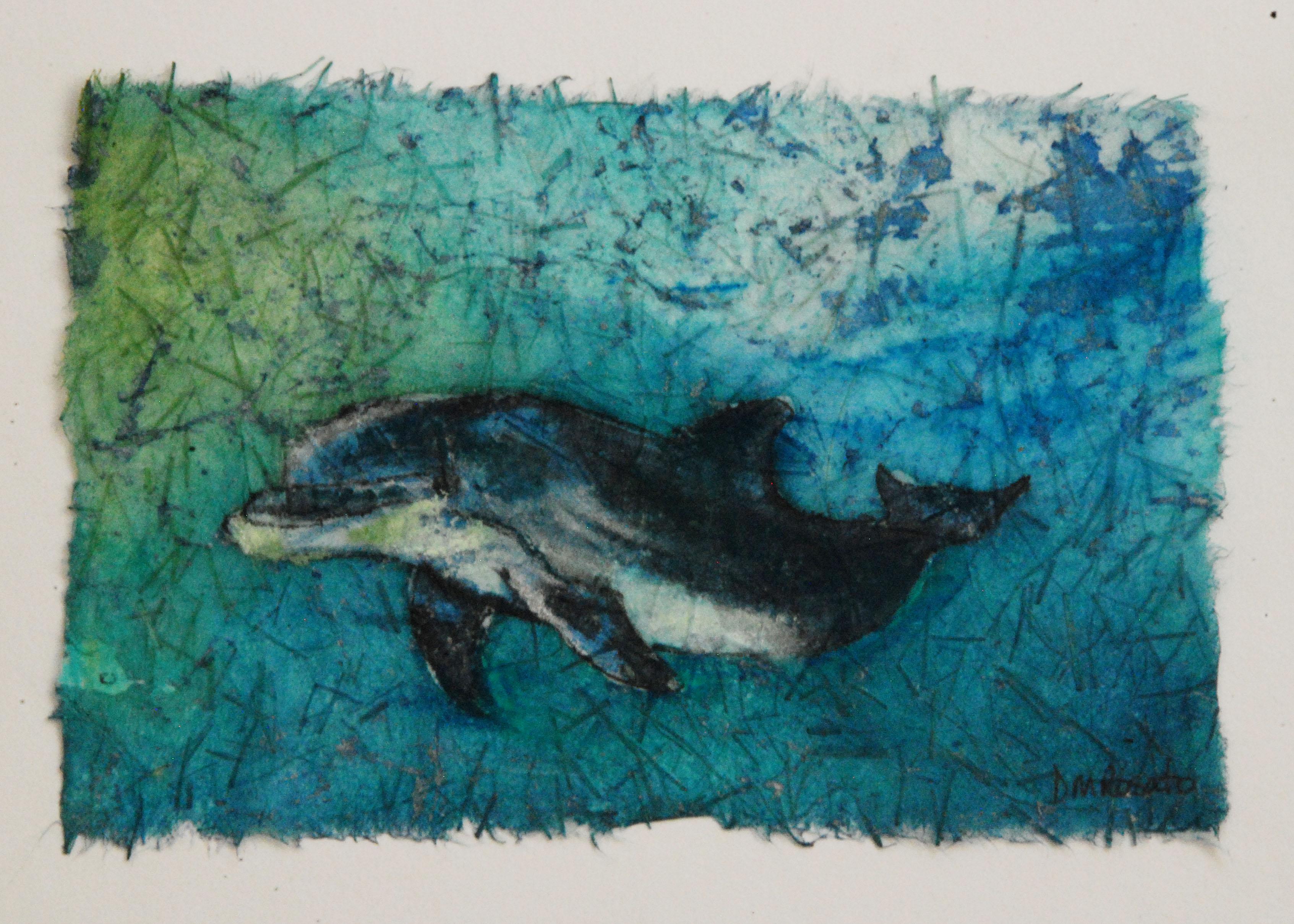 Dolphin 5x7