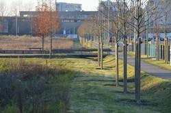 Montargis - Espaces publics du Plateau