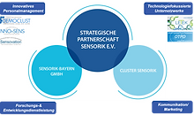 Strategische Partnerschaft Sensorik e.V. ​