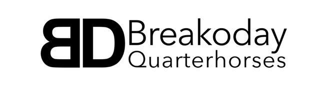 Breakoday Quarterhorses.JPG