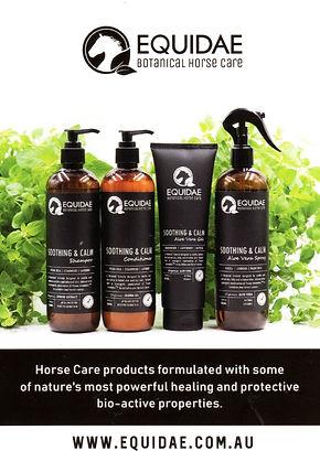 Equidae Botanical Horse Care pic.jpg