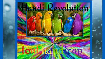 logo_handirévolution.jpg