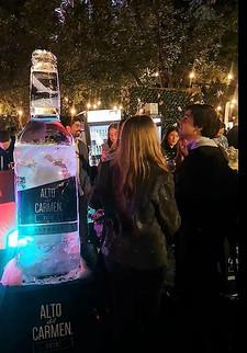 Botella Alto del Carmen Ice 2,2 mts 2.jp