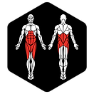 6D-Muscles_Hex-SideLunge_L.png