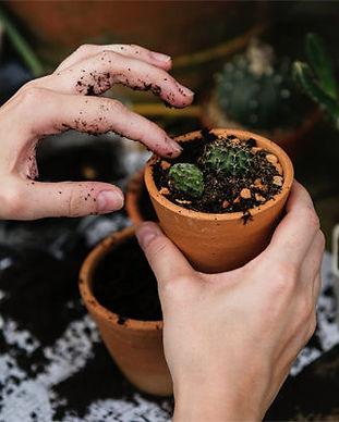 cuenta-jardineria-696x400.jpg