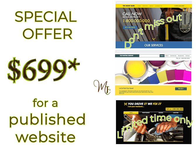 Website Design Sale MTC.jpg