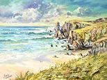 Dalmore cliffs and beach winter_  light