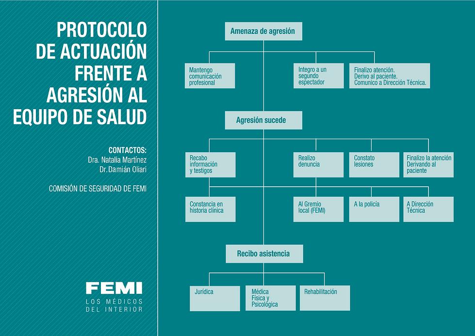 PROTOCOLO DE ACTUACIÓN FRENTE A AGRECIONES AL EQUIPO DE SALUD