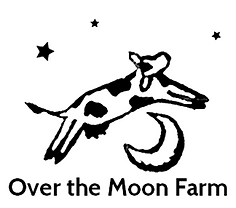 overthemoon.png