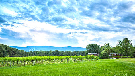 Mount Nittany Winery - View to Tussey.jp
