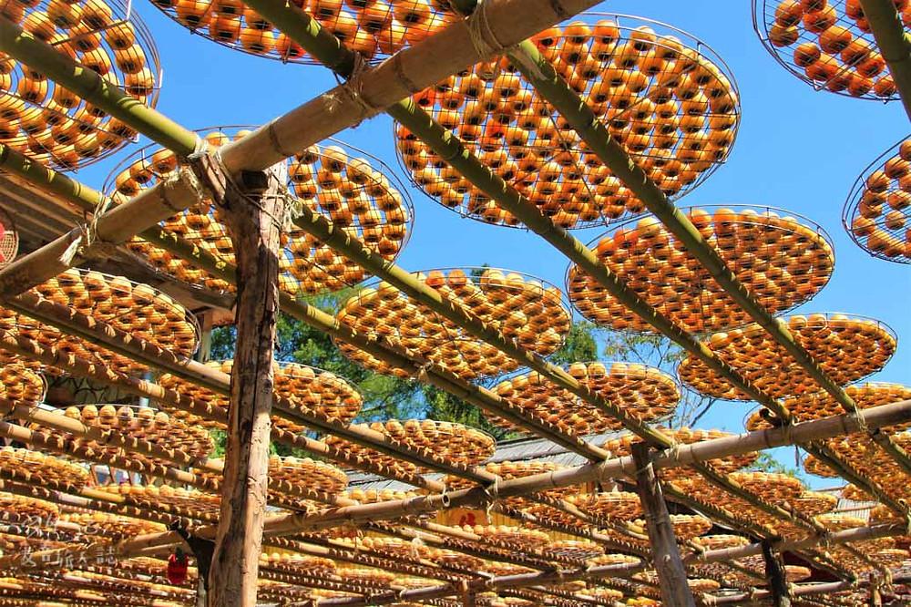 新埔旱坑社區的味衛佳柿餅休閒農場