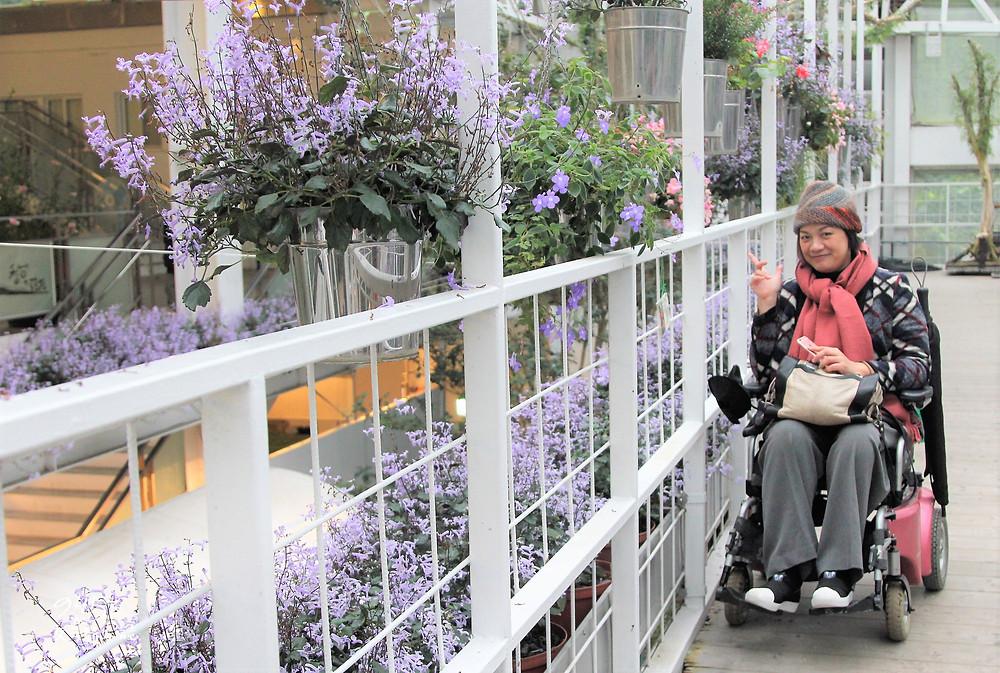 與空中走廊紫色花朵合影
