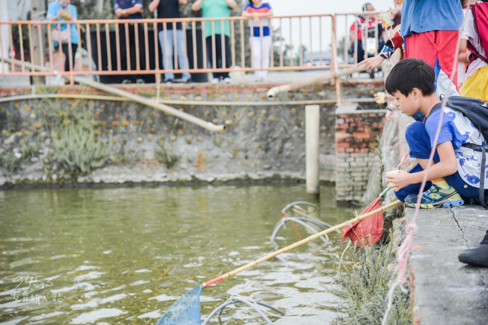 體驗下網捕魚