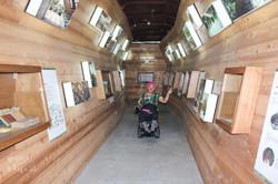 木材展示隧道