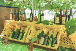 各式各樣的葡萄酒