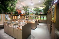 生態展示中心環境