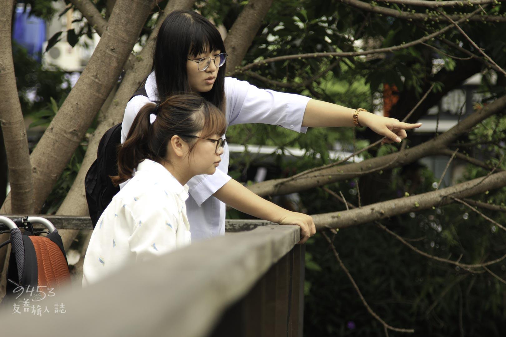 生態池木棧道