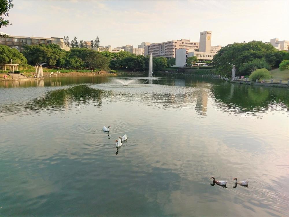 竹湖湖畔欣賞夕照美景