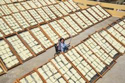 新華米粉廠曬米粉處