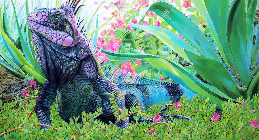 iguana-denny-bond