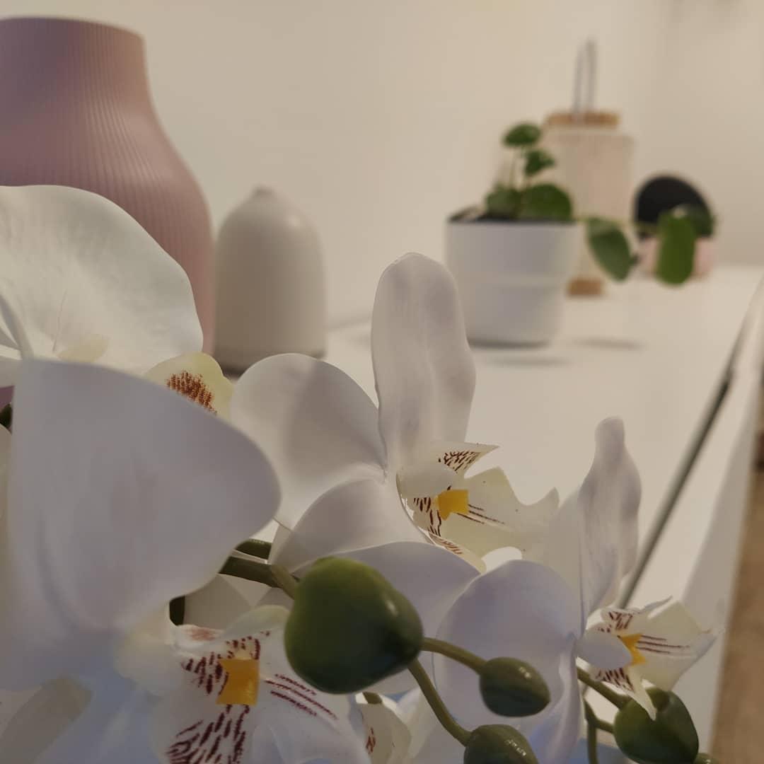 salon orchidee