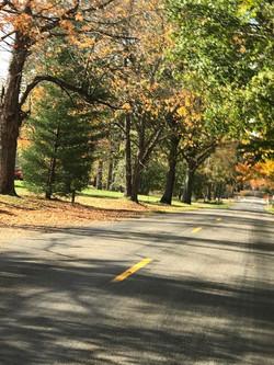 Pavilion-fall road