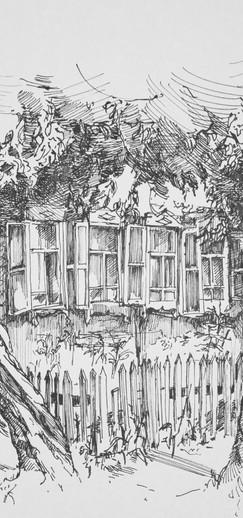 Дом с полисадом в Тюмени