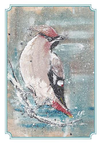 Wax Wing Greetings Card