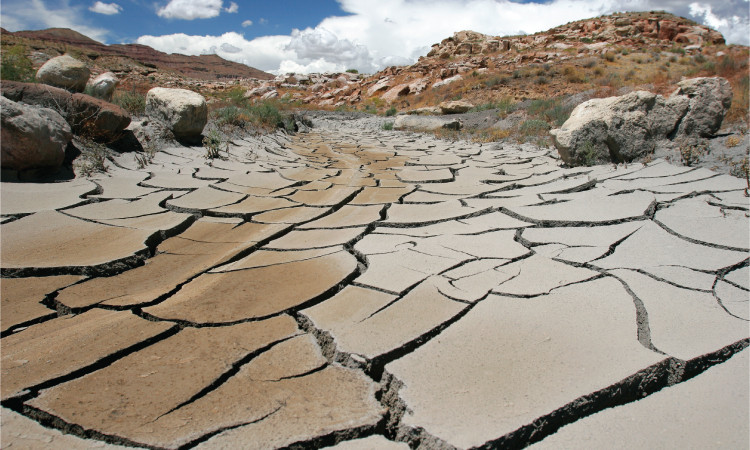 Water Scarcity_Dry River.jpg
